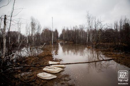 - ПРОФЛЕС - Томск - Деревянное домостроение 044
