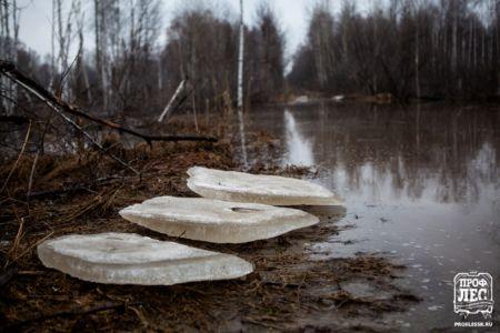 - ПРОФЛЕС - Томск - Деревянное домостроение 047